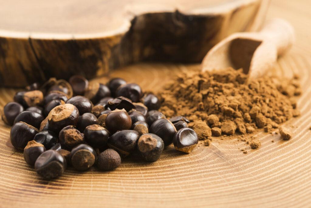 Ramissio Fire semena guarany